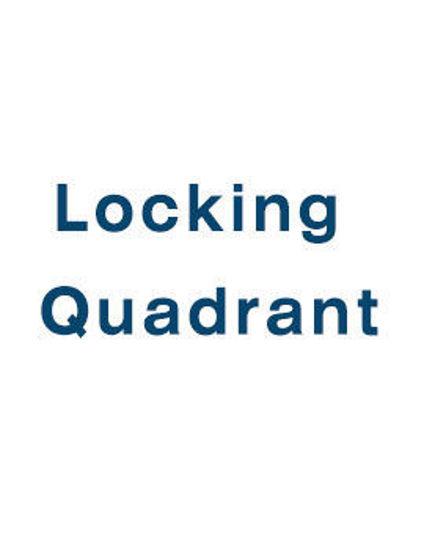 Picture of Manual Locking Quadrant